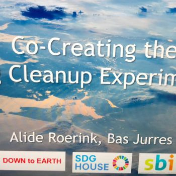 'The Big Cleanup Experiment'
