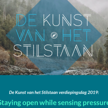 "De Kunst van het Stilstaan ""Staying Open while Sensing Pressure"""