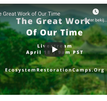 Tip! The Great Work of our Time – online conversation – April 18th – 18.00 – 23.00 A'dam time